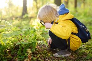 Die Frühlingsaktivitäten, die Kinder lieben